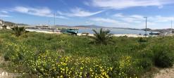 Avşa Adası Yiğitler Barınağı