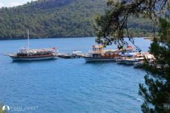 Çamlı Limanı